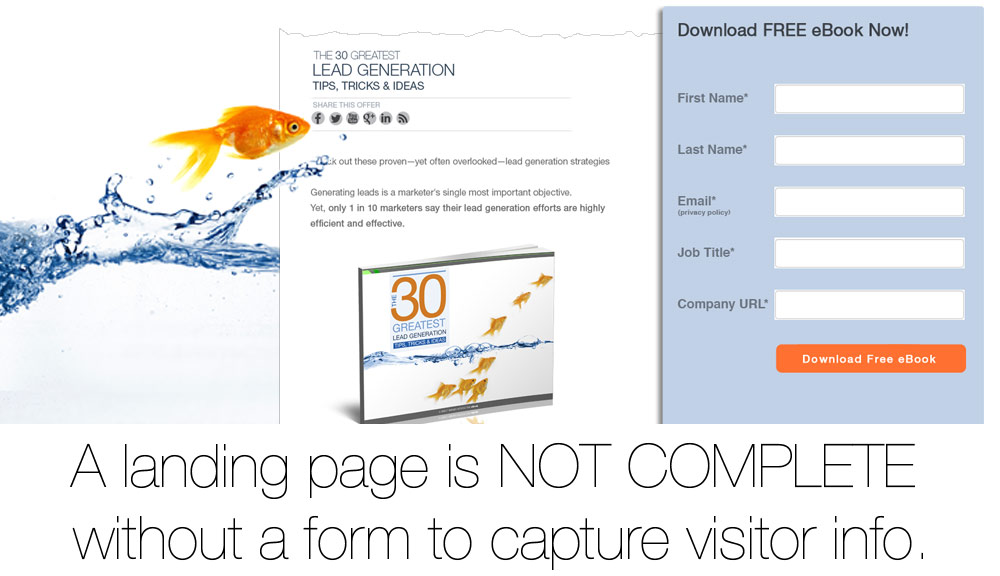 how-to-optimize-landing-page_1000x576